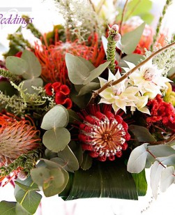 African Flowers in Arrangement