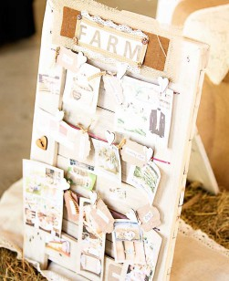 Farm Wedding Story board